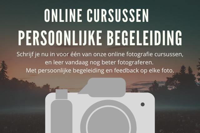 cursussen, online cursus fotografie