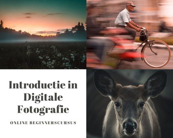 fotografie cursus beginners, online fotografie cursus