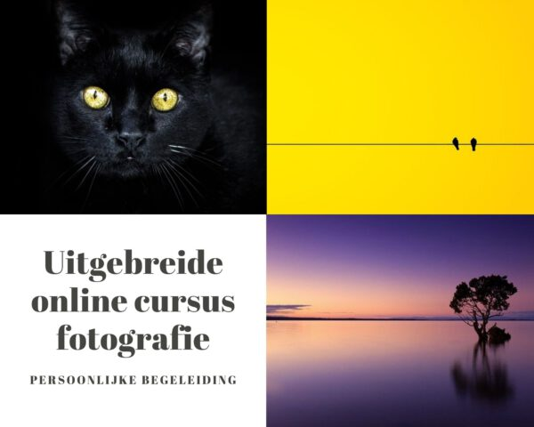 fotografie cursus, online fotografie cursus
